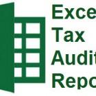 excel-tax-audit-report