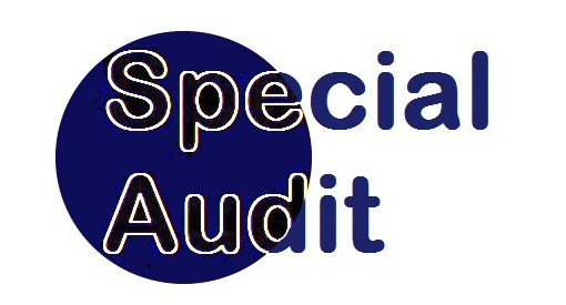 special audit