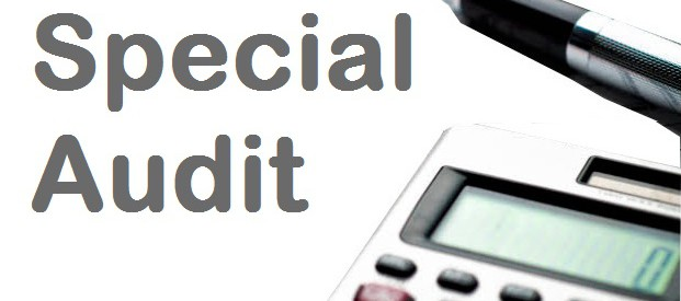special-audit