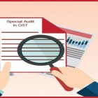 special-audit-gst
