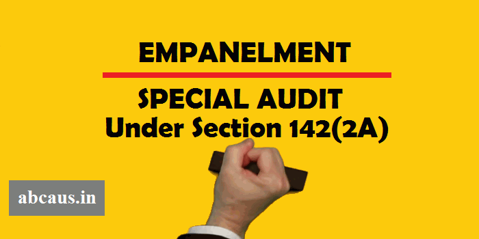 what is special audit